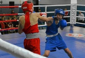 1 (2) На ринге Андрей Демшин (в синей форме)