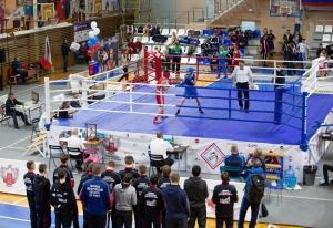 (1) На ринге Андрей Демшин
