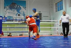 4 На ринге Александр Шульц (в красной форме) (3)